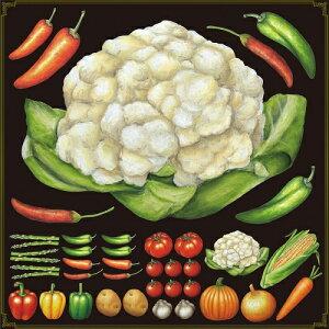 シール カリフラワー ししとう 野菜 装飾 デコレーションシール チョークアート 窓ガラス 黒板 看板 POP ステッカー (最低購入数量3枚〜)