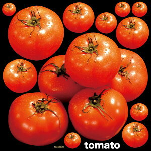 シール 野菜 トマト 写真 装飾 デコレーションシール チョークアート 窓ガラス 黒板 看板 POP ステッカー (最低購入数量3枚〜)