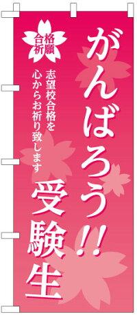 [のぼり旗]学習塾向け「がんばろう!!受験生合格祈願」