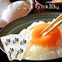【送料無料】白米 米 令和元年 秋田県産 あきたこまち 10kg 小分け 選択可能(2kg×5袋) 自社生産 お米 玄米不可 同梱…