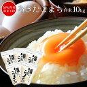 新米予約 で いぶりがっこ付 送料無料 白米 米 令和2年 秋田県産 あきたこまち 10kg 小分け 選択可能(2kg×5袋) お米 …