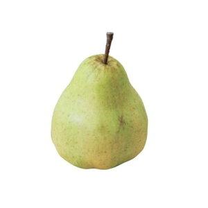 【造花 ペア】洋梨(洋なし フェイクフルーツ フェイクフード 食品サンプル)