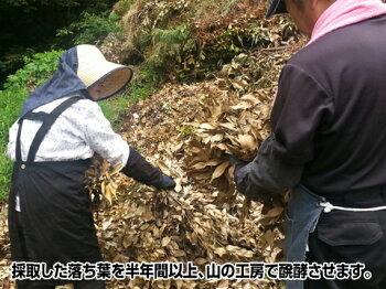 『放射能測定済み』安心安全の日本産落葉使用!金の腐葉土【30L】【RCP】