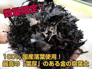 安心安全の日本産落葉使用!金の腐葉土【30リットル】