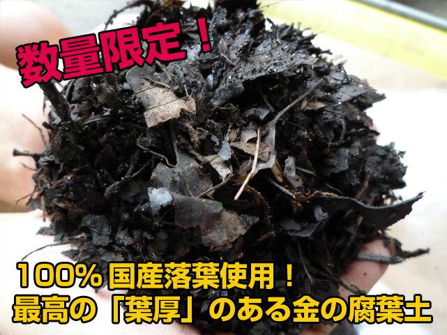 『放射能測定済み』 安心安全の日本産落葉使用! 金の腐葉土【40L】《代引き手数料無料》