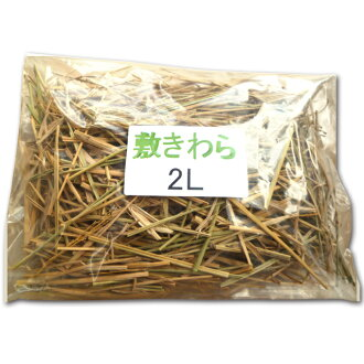 Mulch mulch (Kagawa Prefecture) and prevent from drying and decorative 2 L (length 65 cm common planters one minute)