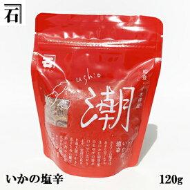 イカの塩辛120g(能登小木港産いかの塩辛)【イカ】【いか】