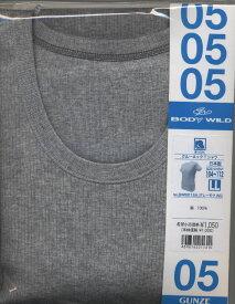 GUNZE見切り50%OFF【グンゼ ボディワイルド】丸首TシャツBWB013【1枚のみネコポス可】