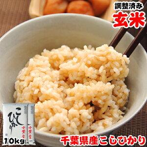 令和2年産 千葉県産 こしひかり 玄米 10kg (5kgx2袋) 玄米食でも安心!再調整済み お米 ギフト