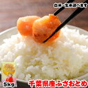 令和元年産 千葉県産 ふさおとめ 5kg お米 ギフト