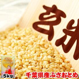 令和元年産 千葉県産 ふさおとめ 玄米 5kg 再調整済み お米 ギフト
