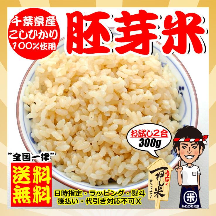 29年 千葉県産 こしひかり 胚芽米 2合(300g)