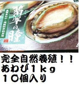 【大人気】冷凍(生食用)あわび1kg(10個入り)(片貝付き)【オーストラリア産完全自然養殖】/訳あり/メガ盛り【RCP】/お中元/02P01Oct16