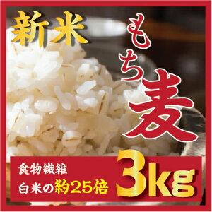 訳アリ【半額セール】もち麦 3kg/内腸肥満に役に立つ もち麦ダイエット麦ごはんご飯 もちむぎ 大麦 βグルカンを含有する/ 韓国産/麦/ ご飯 雑穀の麦 栄養 健康 食物繊維を豊富に含んでいる/