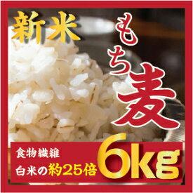 もち麦 6kg【3kgx2個】30年産 ダイエットもちむぎ 大麦 麦 βグルカンを含有する 麦ご飯 雑穀の麦 韓国食品 健康 食物繊維を豊富に含んでいる