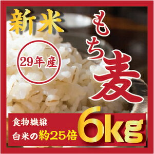 もち麦 6kg 【3kgX2個】新麦29年産 ダイエットもちむぎ 大麦 麦 βグルカンを含有する 麦ご飯 雑穀の麦 韓国食品 健康 食物繊維を豊富に含んでいる