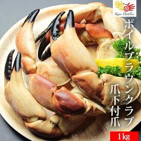 半額 ブラウンクラブ爪下付爪 超特大 総重量1kg / かに カニ 蟹 ボイル ヨーロッパ ボイル お中元 敬老の日