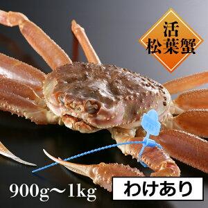 【送料無料】【訳あり指1本落ち】900g-1kg津居山・柴山かにの活松葉かにを直送かにすき、焼きカニ、甲羅焼き、茹でがに