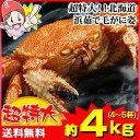 超特大!!北海道浜茹で毛がに姿 約4kg(4〜5杯)【送料無料】