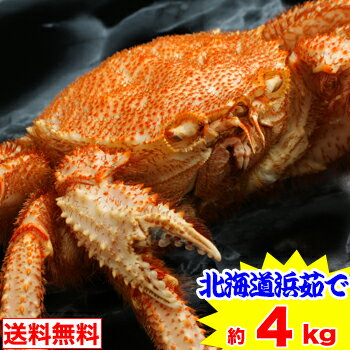 北海道浜茹で毛蟹姿 約4kg(10〜11杯)【送料無料】