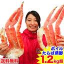 ボイルたらば蟹肩脚 1.2kg超【送料無料】[ ボイル済み かに カニ 蟹 たらば蟹 タラバ蟹 タラバガニ タラバ ]