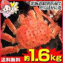 北海道紋別浜茹でたらばがに姿【約1.6kg】【送料無料】[特大|ボイル|ボイル済み|ボイル姿|かに|カニ|蟹|たら…