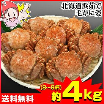 北海道浜茹で毛蟹姿 約4kg(8〜9杯)