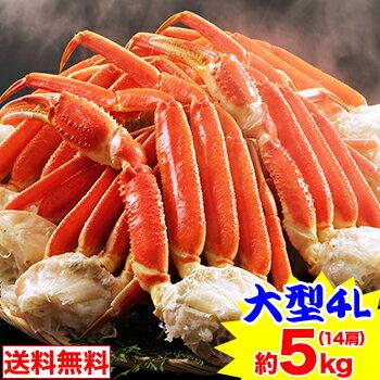 大型4Lボイル本ずわい蟹肩脚 14肩(約5kg)