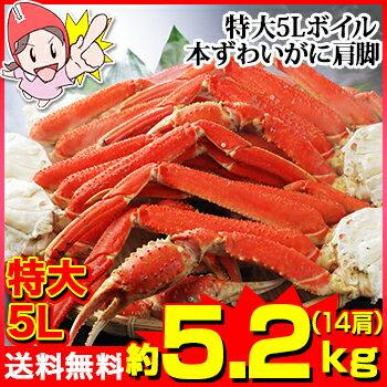 特大5Lボイル本ずわいがに肩脚 14肩(約5.2kg)[肩脚のみ|カット済み|ボイル済み|茹で|ボイルずわい|ボイルズワイ|ボイルずわい蟹|ずわい蟹|ズワイ蟹|ズワイガニ|ズワイ|かに]