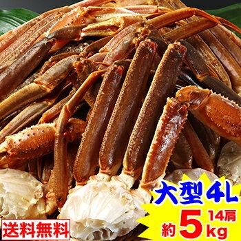 大型4L生ずわい蟹肩脚 14肩(約5kg)【送料無料】[生ズワイガニ|生ずわいがに|生ずわい蟹|肩脚のみ|ずわい蟹|ズワイ蟹|ズワイガニ|ズワイ|かに]