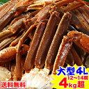 【1000円OFFクーポン】大型4L生ずわい蟹肩脚 12〜14肩 4kg超【送料無料】[生ズワイガニ|生ずわいがに|生ずわい蟹|…