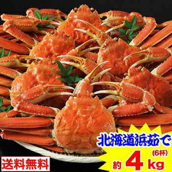 北海道紋別浜茹で ずわい蟹姿 6杯(約4kg)