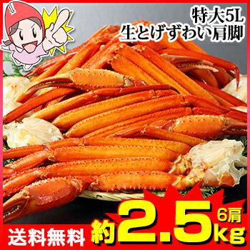 特大5L 生とげずわい蟹肩脚 6肩(約2.5kg) 【送料無料】[生トゲズワイガニ|生とげずわいがに|生とげずわい蟹|肩脚のみ|とげずわい蟹|トゲズワイ蟹|トゲズワイガニ|トゲズワイ|かに]