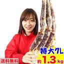 特大7L生たらば肩脚 1肩(約1.3kg)[ 生タラバガニ 生タラバ蟹 生たらば蟹 特大 かに カニ 蟹 たらば蟹 タラバ蟹 タ…