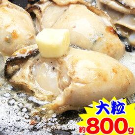 【大粒】広島県産かき剥き身 約800g