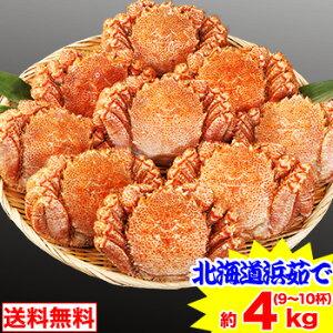 北海道浜茹で毛蟹姿 約4kg(9〜10杯)