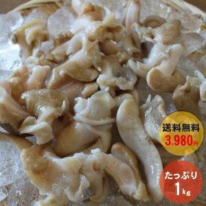 【最安値に挑戦!!】 最安値に挑戦!! 送料無料 赤バイ貝 むき身 (1kg)【冷凍】 貝 ばい貝 海鮮 赤ばい貝