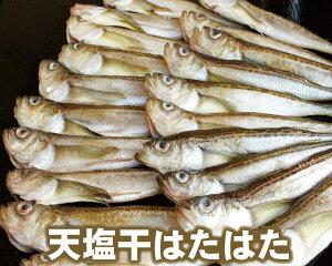 【20-082】天塩干はたはた 1kg (19〜24尾)(冷凍)