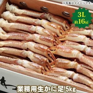 【20-066】業務用生ずわいかに足 5kg 3L (約16肩)カニ ズワイガニ 送料無料 かに 蟹 ギフト お取り寄せグルメ
