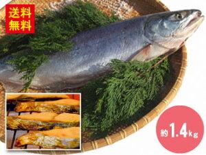 【楽天スーパーDEAL】\15%ポイントバック/ 送料無料 新巻鮭 約1.4kg 約50cm(冷凍)さけ しゃけ サケ 鮭 シャケ 魚 送料無料 冷凍 おかず 弁当 ギフト お取り寄せグルメ お取り寄せ 取り寄せ