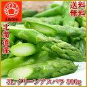 送料無料 北海道産秀品3Lグリーン アスパラガス 500g入り極太/3L/アスパラ/あすぱら/北海道/P06May16
