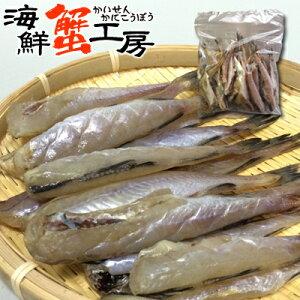 姫タラ 一夜干し 500g 訳あり 姫たらスケソウダラ 助惣鱈 たら 鱈 タラ 焼き魚おつまみ 干物 北海道 珍味