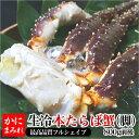 活〆本タラバ脚生冷【焼き蟹用 最高品質フルシェイプ】 極上一本物(1肩800g前後)