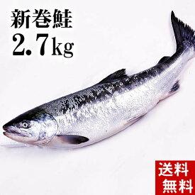 (送料無料)新巻鮭の姿 2.7kg (北海道オホーツク産)味を引き立てる塩気と、身が引き締まりしっとりとしたサケ本来の味をお楽しみください。焼き魚やしゃけおにぎりも美味しい。北海道グルメ食品 魚介類【#元気いただきますプロジェクト】
