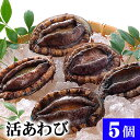 北海道産 活蝦夷鮑 5個入りで合計500g前後 エゾアワビが活きたままで届きます。活あわびだからこそお刺身、肝醤油、…