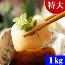 特大 ホタテ貝柱/ホタテ玉冷 2Lサイズで1kg(15〜20玉入り・冷凍) お刺身で食べることも出来きる北海道産の帆立です…