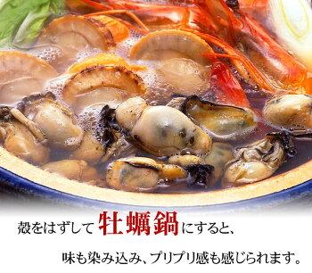 (送料無料)がんがん蒸し2kg前後(2年貝・15〜20個)牡蠣殻付き生食北海道サロマ湖産の殻付きかき貝。自宅で蒸し焼きのカキが食べられます。蒸し牡蠣用の缶付き。ガンガン焼きカンカン焼き一斗缶の4分の一の缶です。