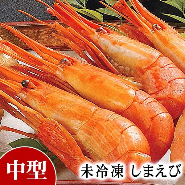 未冷凍 北海シマエビ Mサイズ 500g前後(30〜40尾入り 北海道産)しまえびは海老味噌も美味しく食べられます。北海道の貴重な縞海老です。海老通販 グルメ食品 魚介類・シーフード エビ 北海シマエビ