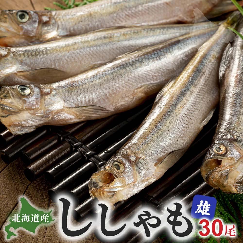 シシャモ オス 30尾入り(雄 中サイズ)潮風と天日で干した北海道鵡川・厚賀・広尾・釧路産ししゃも。脂のりも良く、ご飯のおかず、お酒のおつまみに最適な干物柳葉魚、干し魚。北海道グルメ食品 魚介類・ 干物 シシャモ(ギフト)