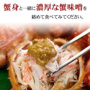 北海道産活毛蟹500g前後中型毛ガニの美味しさを味わうなら、未冷凍の活の毛蟹。茹でたて毛がにの醍醐味でもあるカニ味噌。活毛ガニでかにお刺身用、焼きガニが食べられます。【RCP】